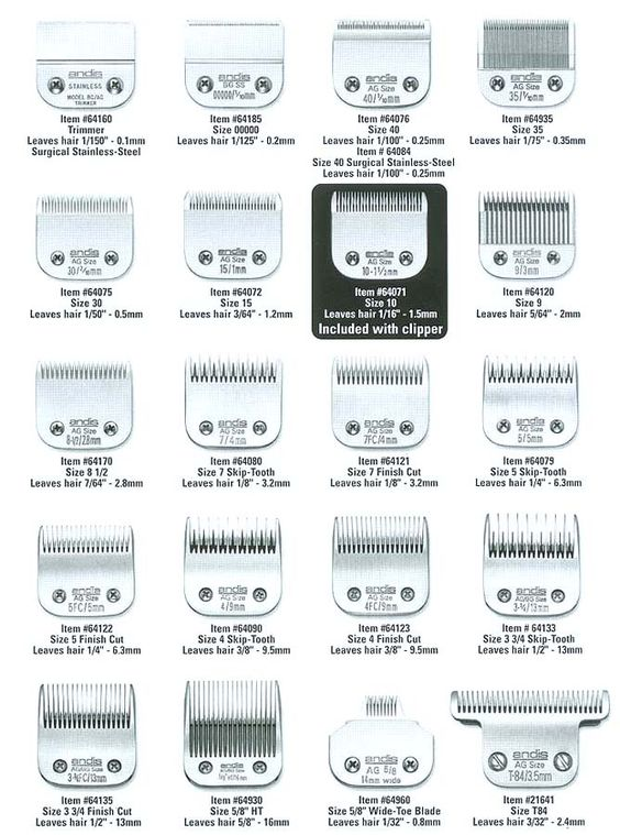 guía cortadora de cabello
