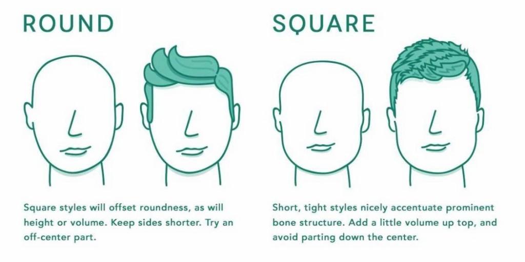 cara pelo corto guía en forma de